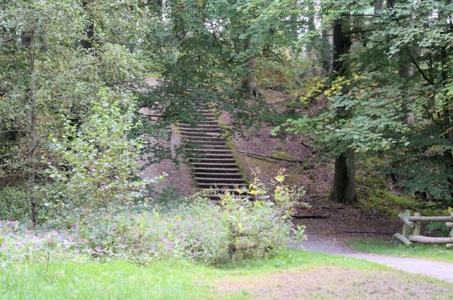 Treppe_Wald© Archimeda 1