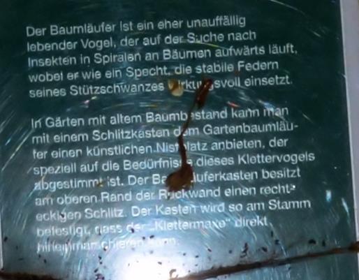 Baumläuferhöhle_Erklärung © Archimeda 1-2