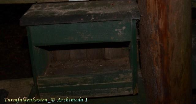 Turmfalkenkasten_© Archimeda 1