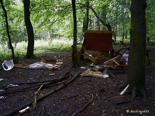 Haus im Wald_©Archimeda1