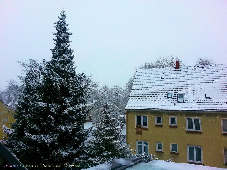 Natur-Winter in Dortmund_© Archimeda 1