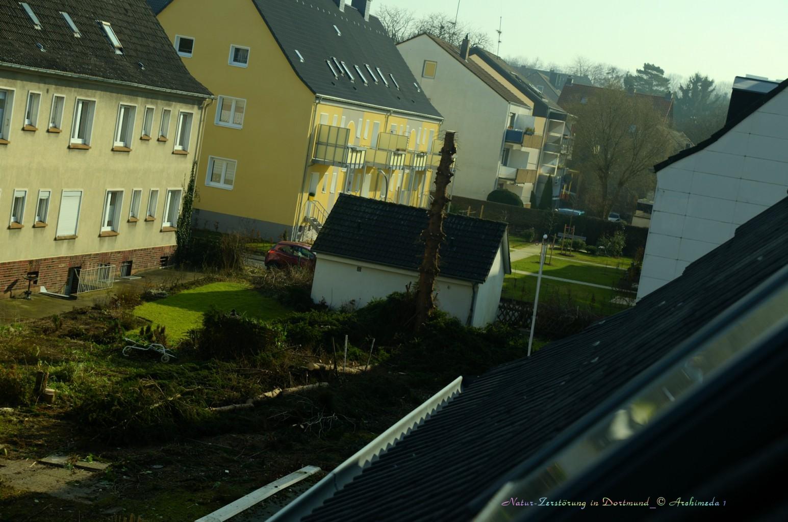Natur-Zerstörung in Dortmund_© Archimeda 1_3