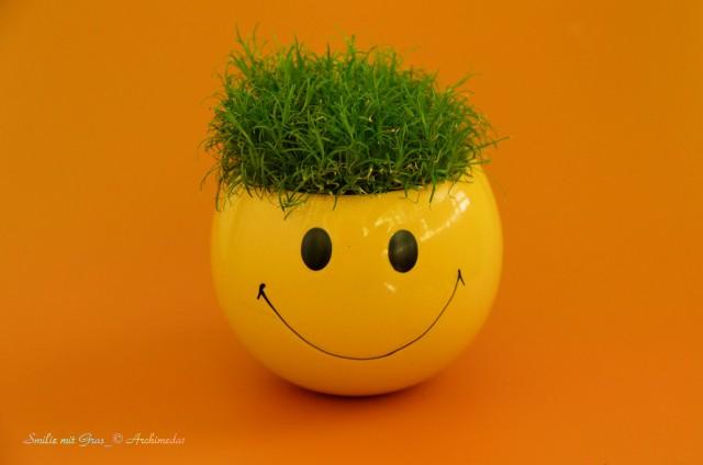 Smilie mit Gras_© Archimeda1