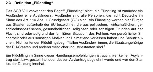 Defination Flüchtling