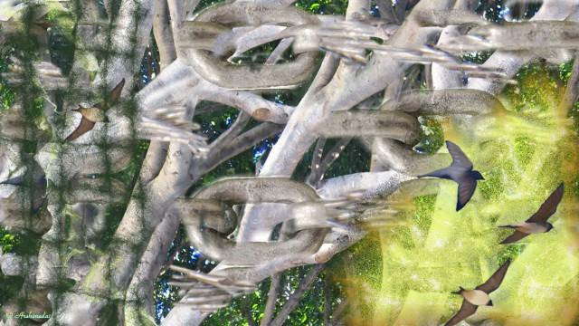 Der gefangende Wald_Archimeda1