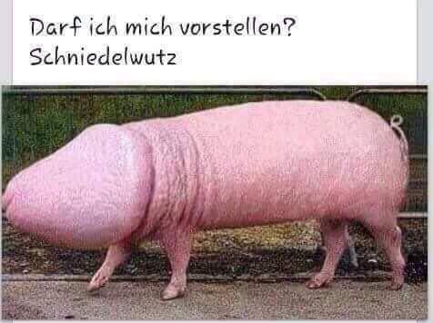 Netzpfund_Schniedelwutz