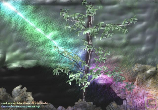 der letzte Baum_© Archimeda1