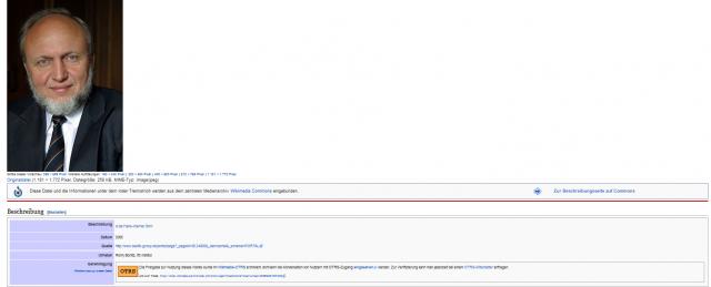 Prof Sinn_Wikipedia