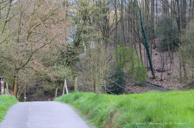 Muttental_Wanderweg A2 © Archimeda1
